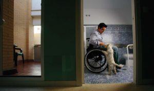 Las ayudas convocadas por Igualdad respaldarán programas dirigidos tanto a las personas con discapacidad como a sus familias.