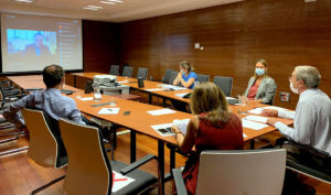 El consejero Rogelio Velasco, reunido telemáticamente con los rectores de las universidades públicas andaluzas.