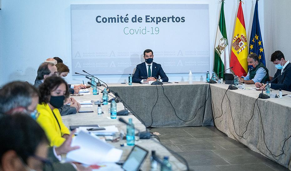 El presidente presidiendo la reunión del Comité de Expertos.