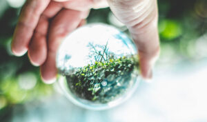 El nuevo Plan de Medio Ambiente se abrirá a las aportaciones de los ciudadanos.